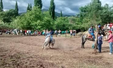 """Se realizó la 4ta edición del Festival de """"La Nuez, Doma y Folclore"""" en el distrito del Potrero"""