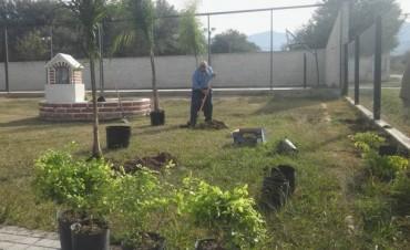 El Municipio Realiza Forestación y Decorado en el Polideportivo Juan Chelemín