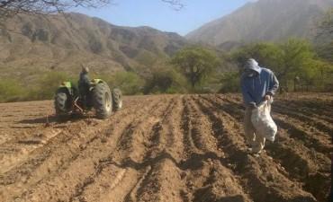 Productores preocupados por falta de agua de riego